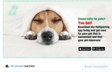 social media marketing for Veterinary-Business increase Business Post (Reach)